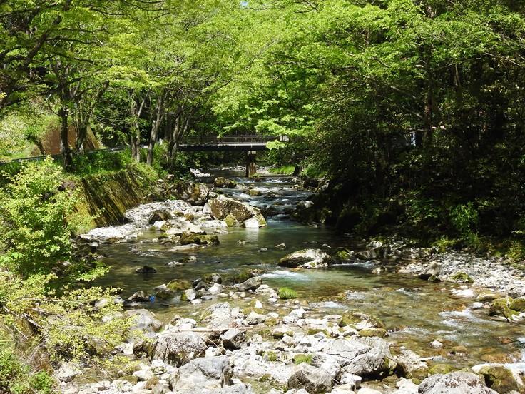 『渓流風景(神崎川と円原川)』_d0054276_2022328.jpg