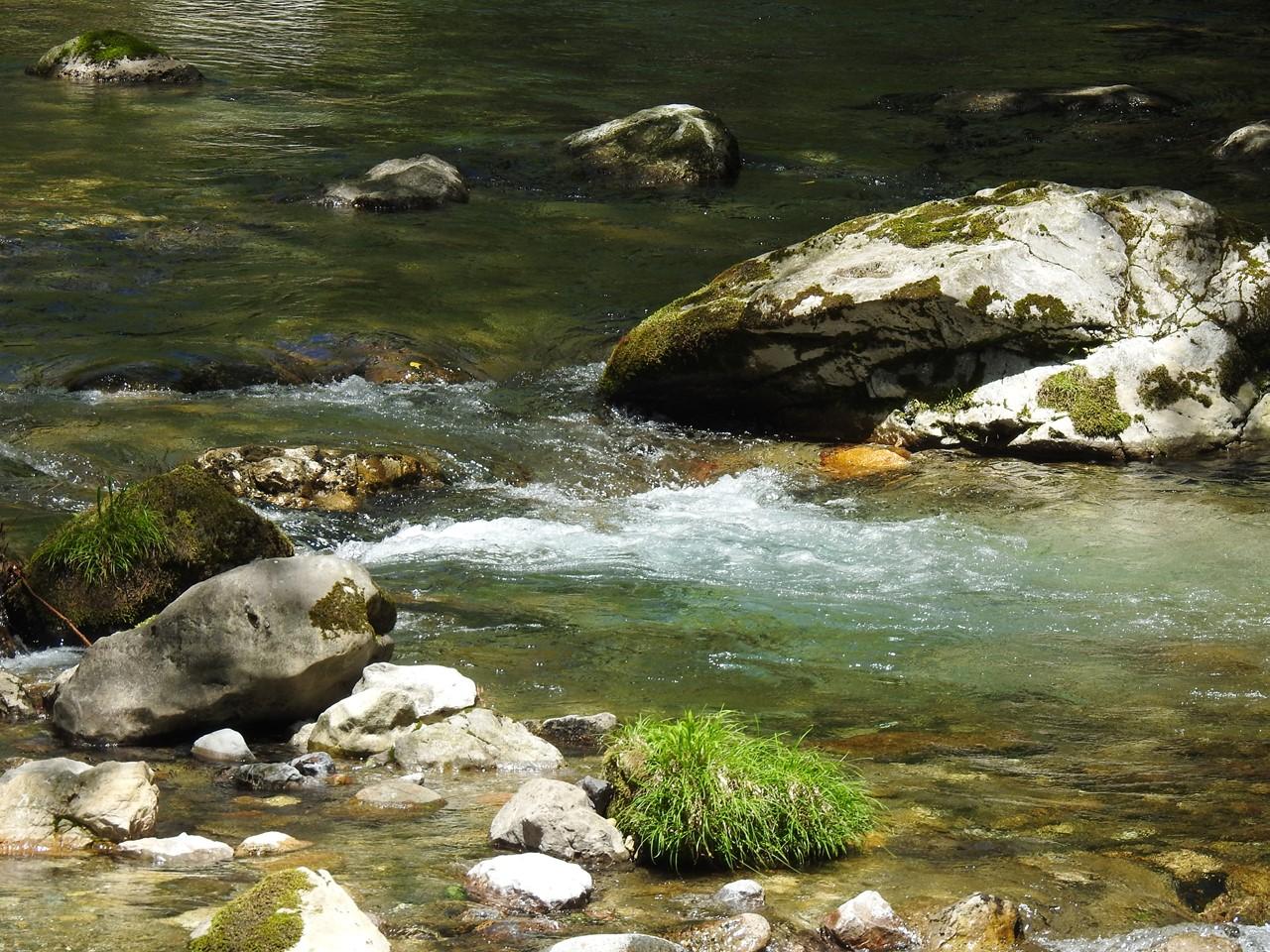 『渓流風景(神崎川と円原川)』_d0054276_20223332.jpg