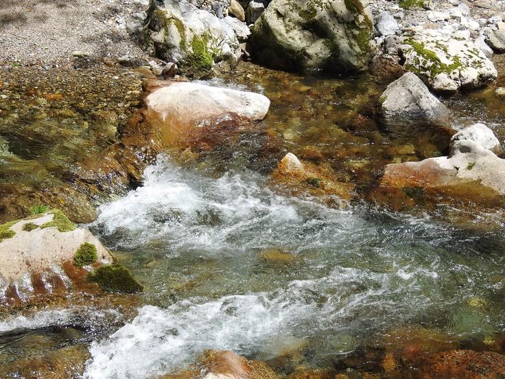 『渓流風景(神崎川と円原川)』_d0054276_2024176.jpg