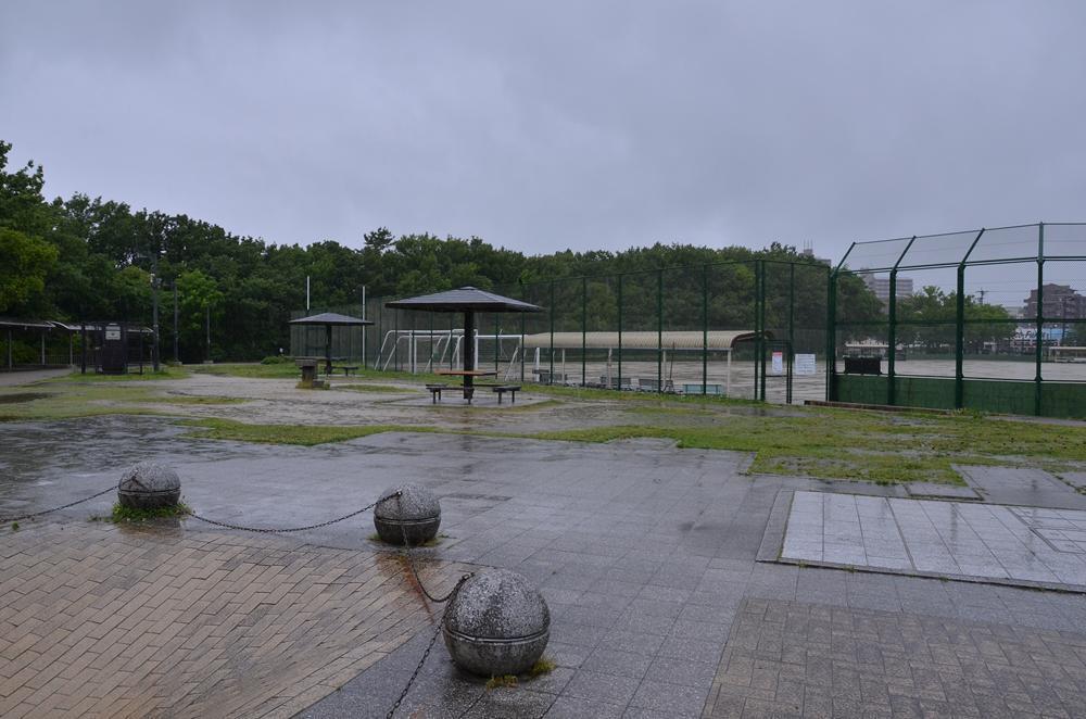 雨降りの公園、独り占め?_f0159784_11335251.jpg