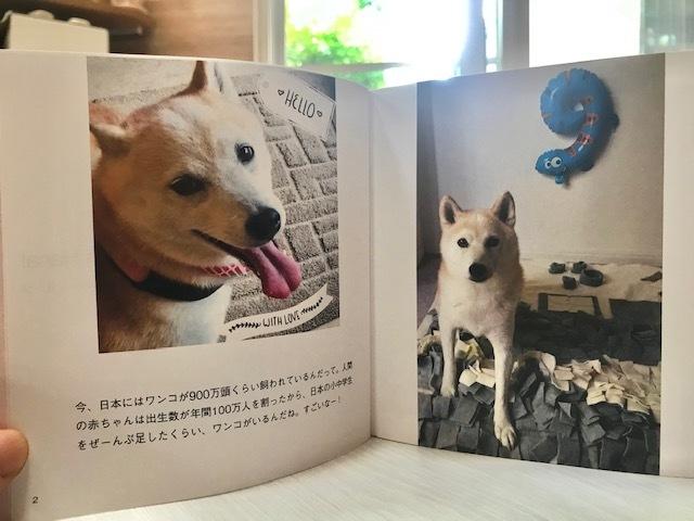 元繁殖犬「はなちゃん」のフォトブック_f0242002_21144219.jpg
