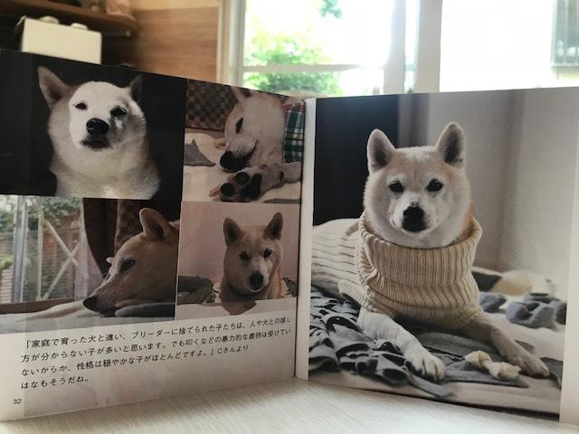 元繁殖犬「はなちゃん」のフォトブック_f0242002_21443746.jpg