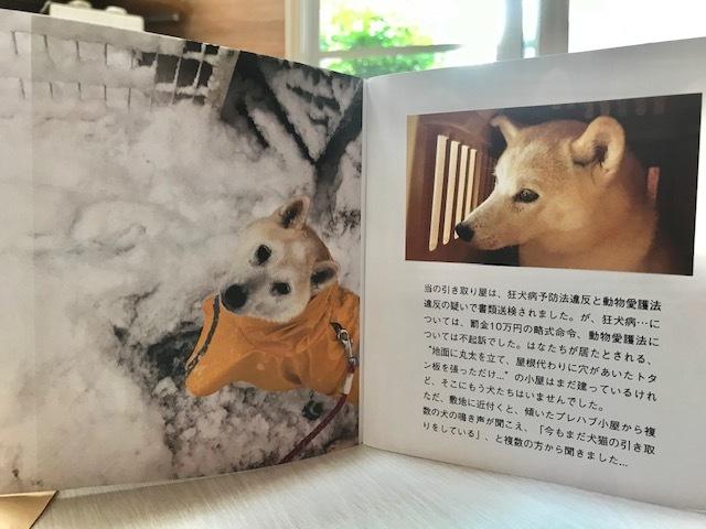 元繁殖犬「はなちゃん」のフォトブック_f0242002_21595987.jpg