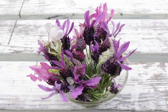 花だらけ_b0132338_06555191.jpeg