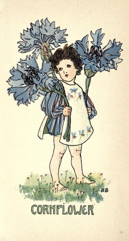 ネリー・ベンソンの花の女の子たち_c0084183_15191780.jpg