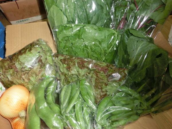 自然栽培の野菜_a0391592_19504121.jpg