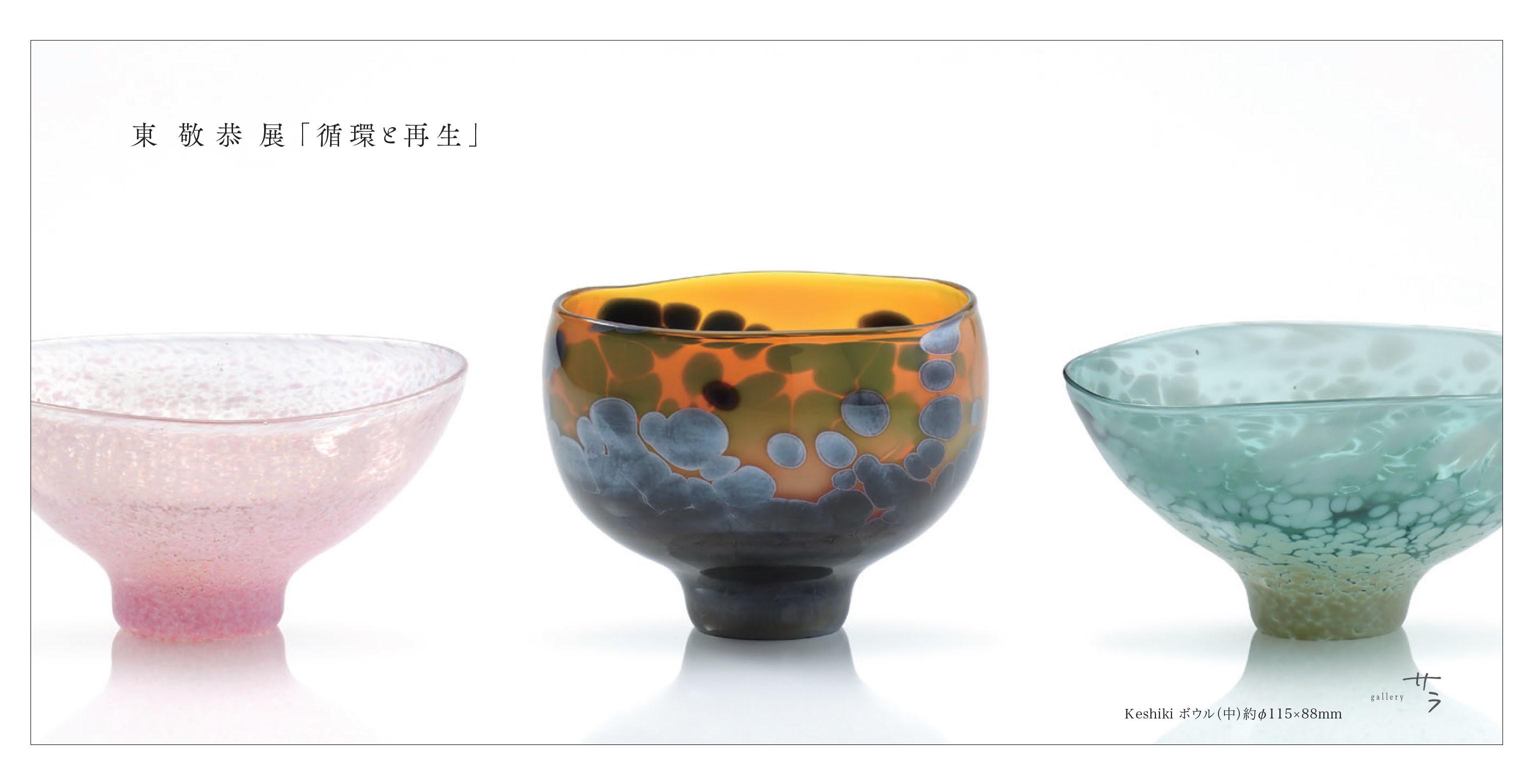 galleryサラ(大津)での個展のお知らせ_c0212902_16312841.jpg
