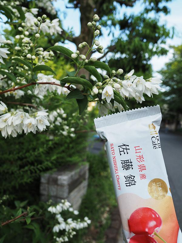 佐藤錦アイスと水ようかん_a0003650_18085669.jpg