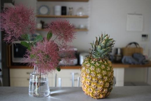 初夏の庭花とパイナップル_d0291758_22495535.jpg