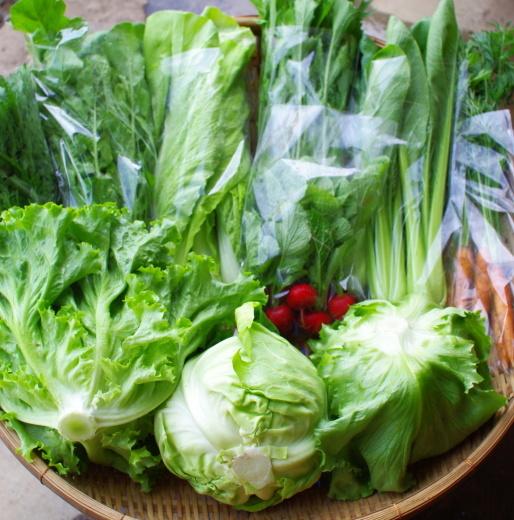 今週の野菜セット(5/26~5/30着)今シーズン初回です!_c0110869_12152415.jpg