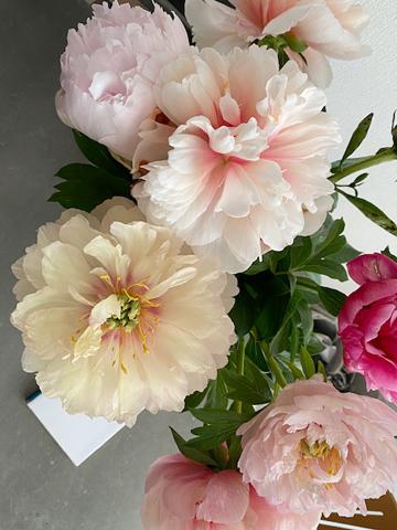 Un bouquet de fleur :花束_f0038600_18514777.jpg