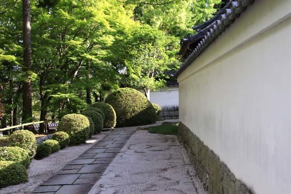 南禅寺 朝参り_e0048413_18214825.jpg
