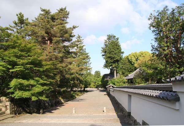 南禅寺 朝参り_e0048413_18220266.jpg