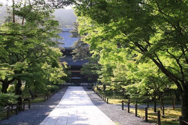 南禅寺 朝参り_e0048413_18221126.jpg