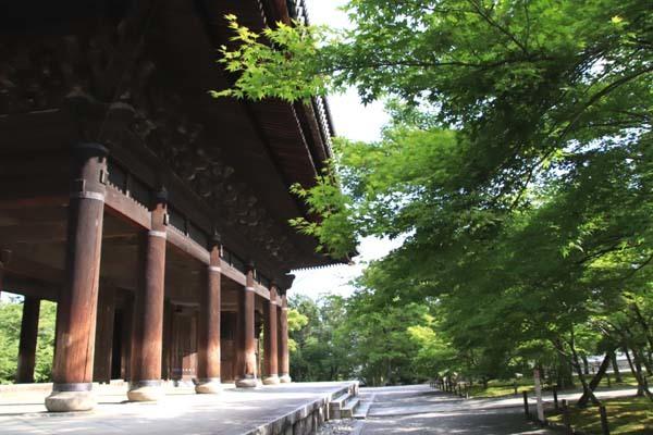 南禅寺 朝参り_e0048413_18223064.jpg