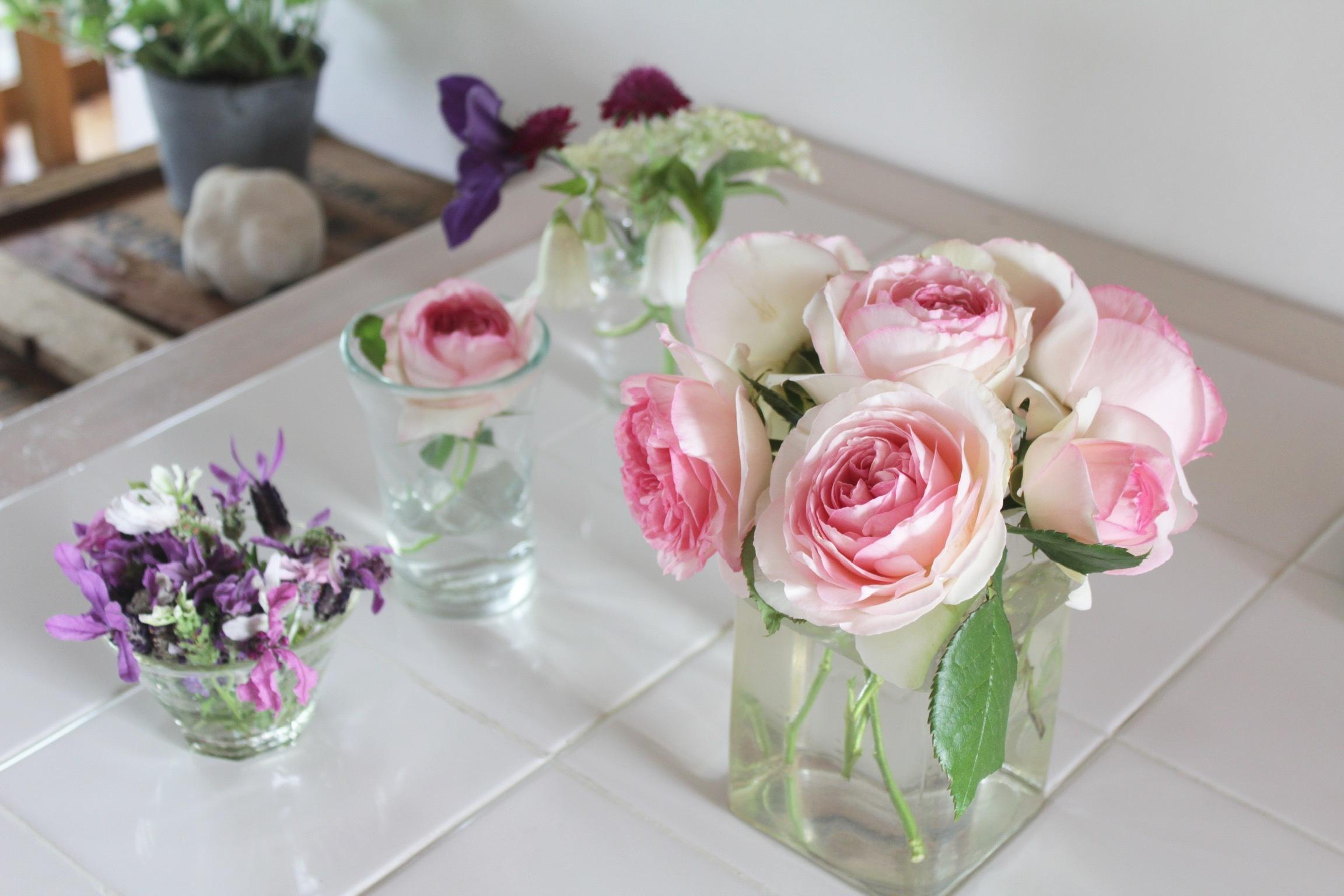 花だらけ_b0132338_08303239.jpeg