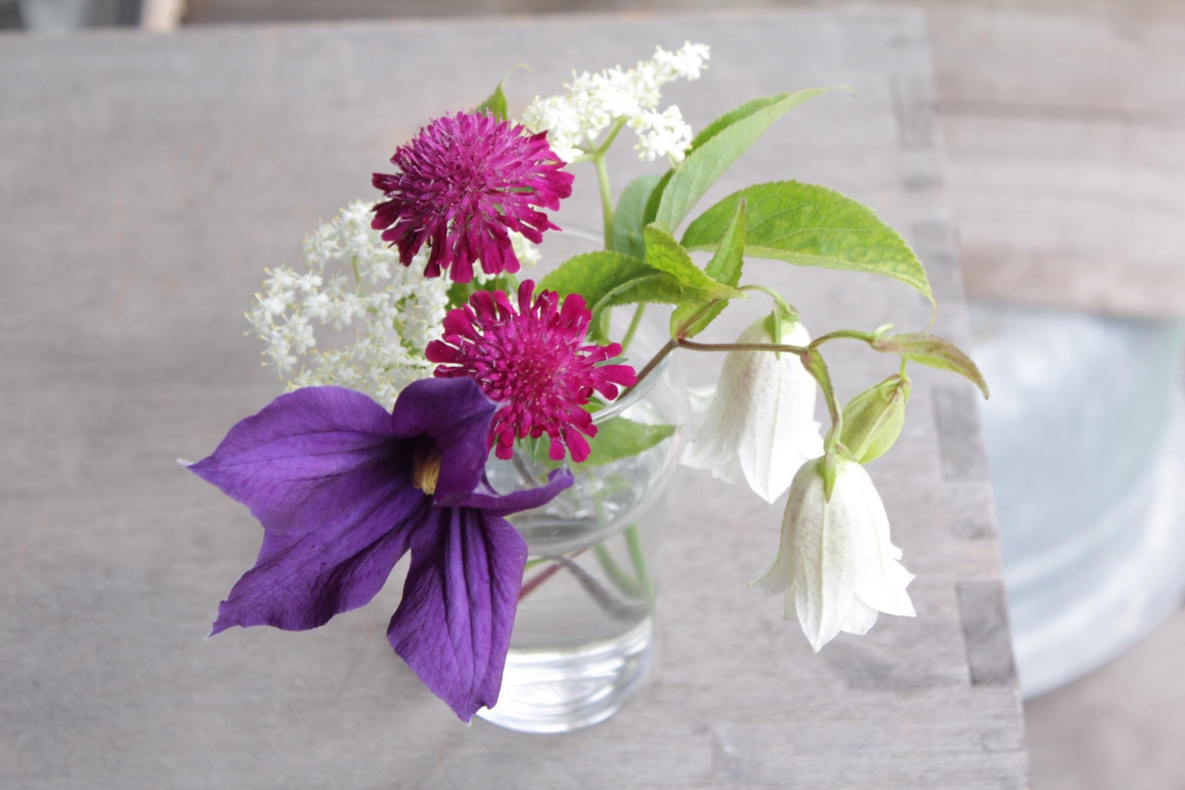 花だらけ_b0132338_08310388.jpeg