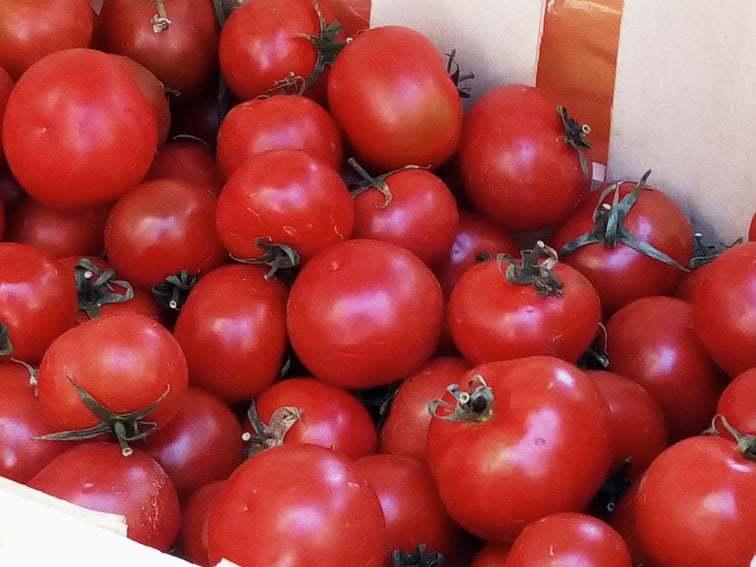 最近の野菜たち_b0305039_18452808.jpg