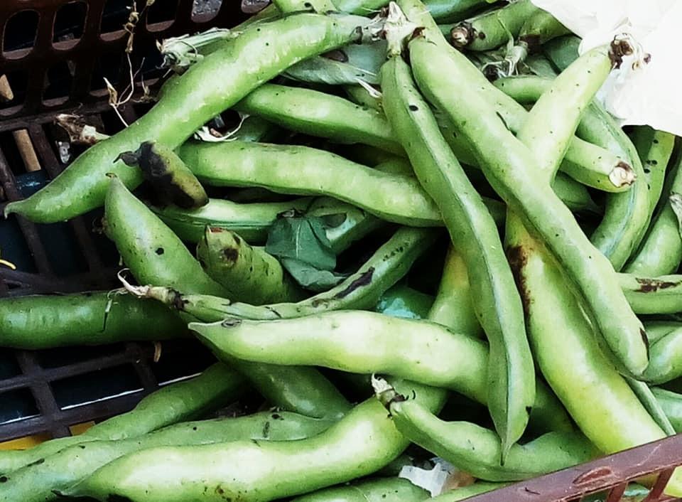 最近の野菜たち_b0305039_18464097.jpg