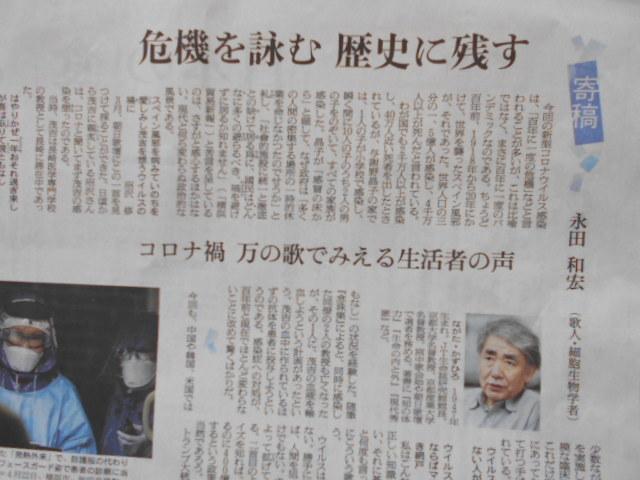 与謝野晶子の100年前の痛言、安倍首相の昨日の駄言_b0050651_10062579.jpg