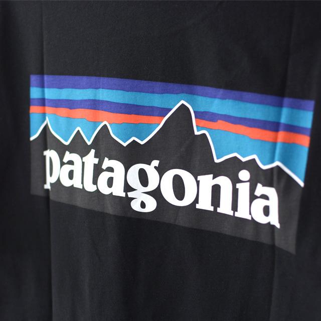 Patagonia [パタゴニア] Men\'s P-6 Logo Organic T-Shirt [38535] メンズ・P-6ロゴ・オーガニック・Tシャツ MEN\'S_f0051306_15001341.jpg