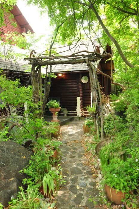 garden cruise,late May_f0188408_10153063.jpg