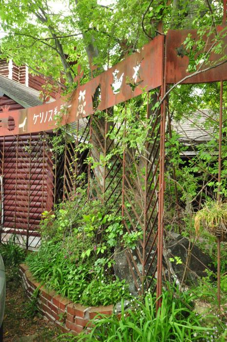 garden cruise,late May_f0188408_10155587.jpg