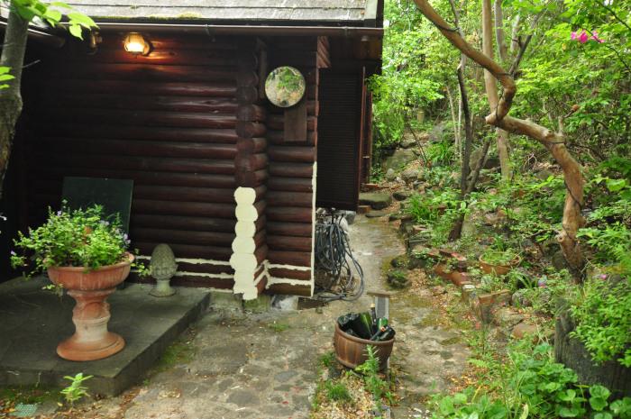 garden cruise,late May_f0188408_10163215.jpg
