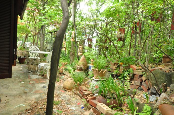 garden cruise,late May_f0188408_10165268.jpg