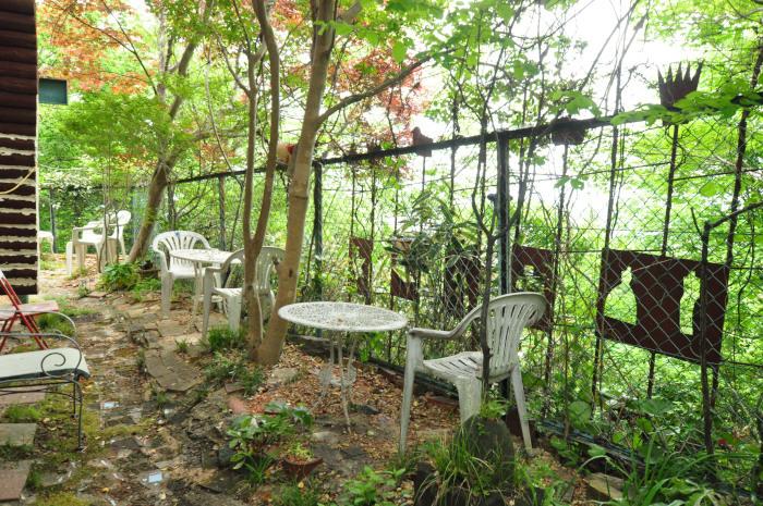 garden cruise,late May_f0188408_10174623.jpg