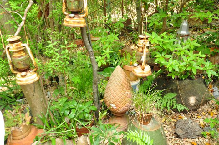 garden cruise,late May_f0188408_10182810.jpg