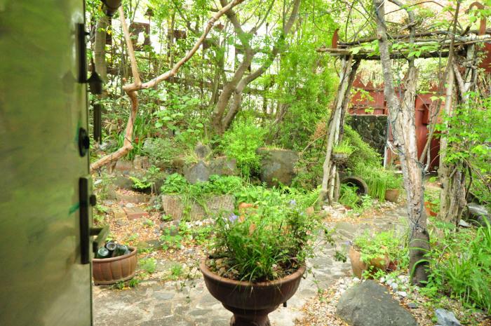 garden cruise,late May_f0188408_10195658.jpg
