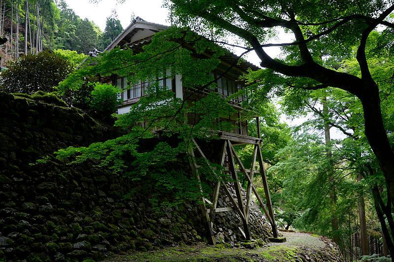 緑濃きお寺_f0032011_19060533.jpg