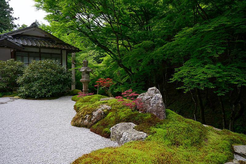 緑濃きお寺_f0032011_19073934.jpg