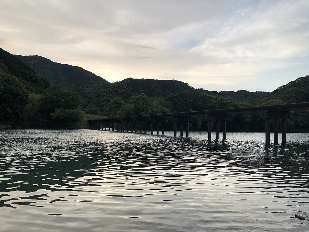 勝間沈下橋でのゲンジボタル_f0324026_20232645.jpg