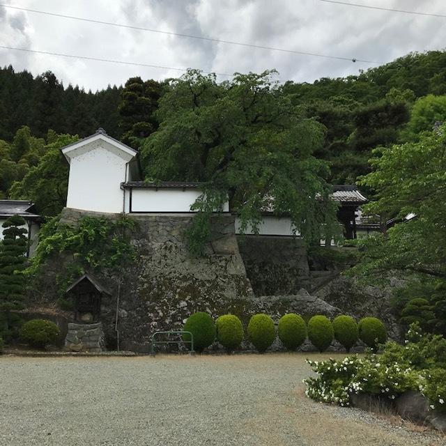大雲寺とハンバーガーと_e0226943_22571982.jpg