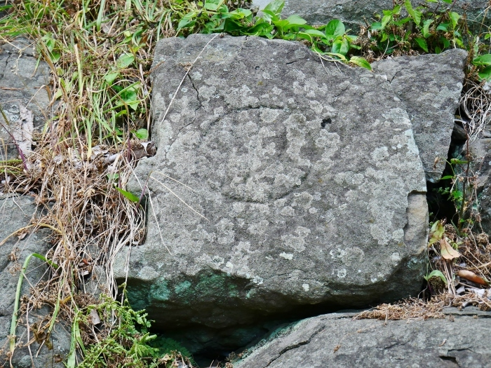 和歌山城石垣の刻印  2020-05-30 00:00     _b0093754_22571206.jpg