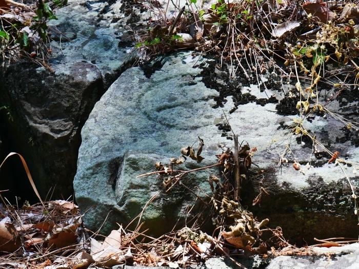 和歌山城石垣の刻印  2020-05-30 00:00     _b0093754_22573876.jpg