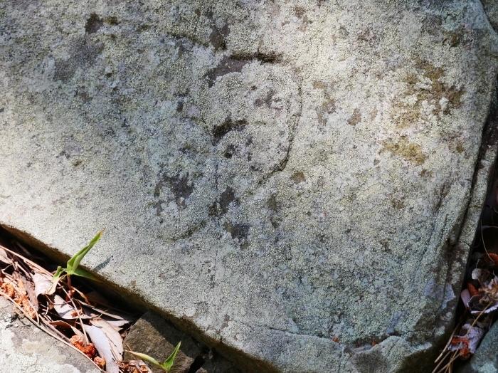 和歌山城石垣の刻印  2020-05-30 00:00     _b0093754_22575832.jpg