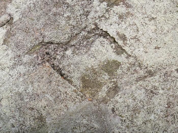 和歌山城石垣の刻印  2020-05-30 00:00     _b0093754_22581945.jpg