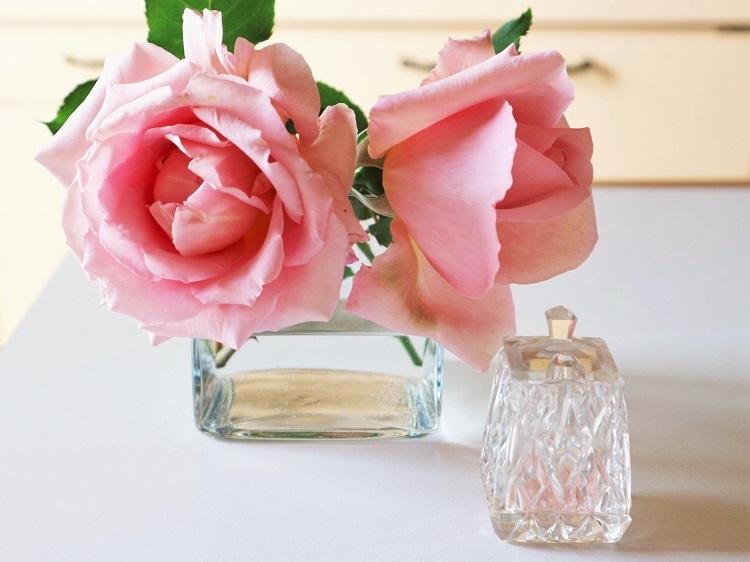 薔薇の季節_d0159066_21121751.jpg