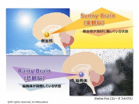 筋肉が関係した痛みは慢性化する危険が付きまとう_b0052170_15401934.jpg