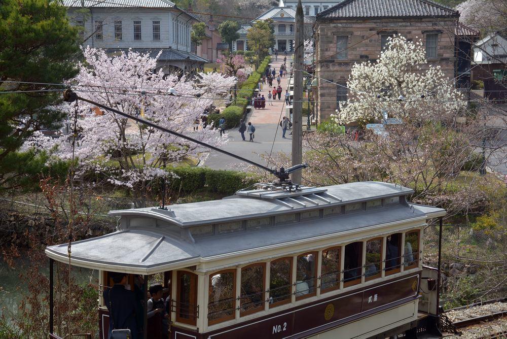市電七条電停と桜 レンガ通り_e0373930_20034480.jpg