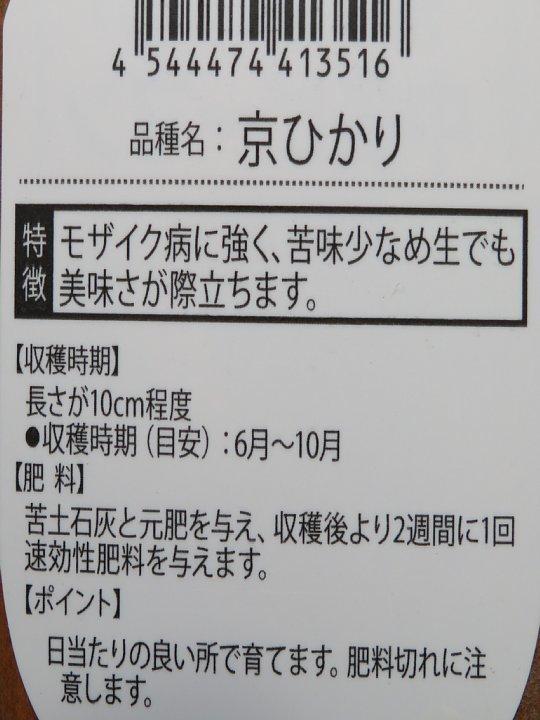 2020年6月3日 夏野菜づくりスタート  !(^^)!_b0341140_18123418.jpg