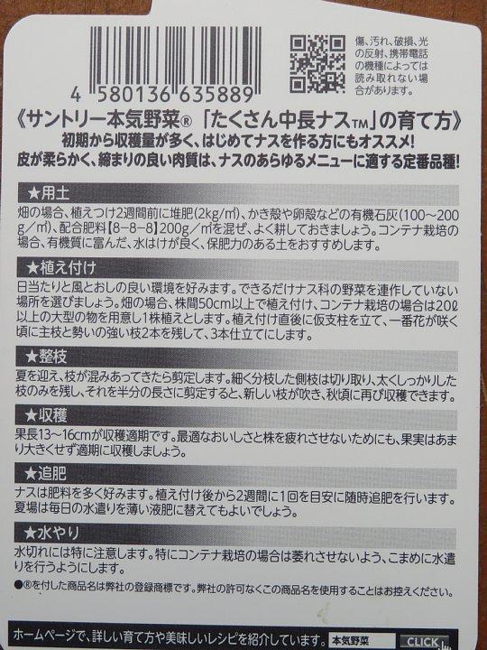 2020年6月3日 夏野菜づくりスタート  !(^^)!_b0341140_18160302.jpg