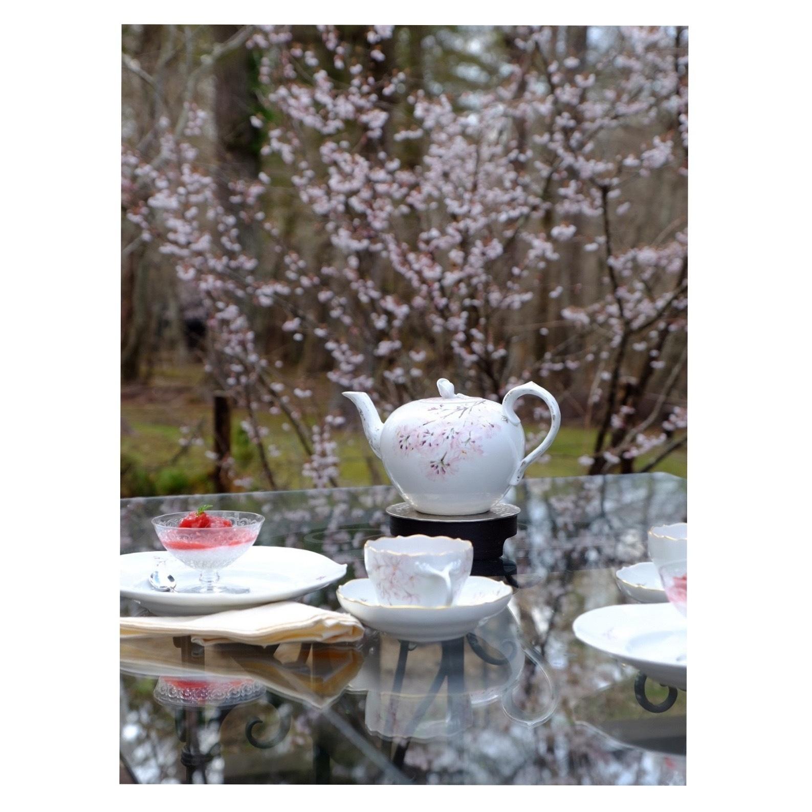 桜を描いた器でお茶時間_a0335867_21290852.jpeg