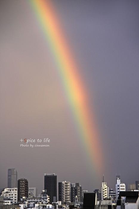 Rainbow_f0326278_21041549.jpg