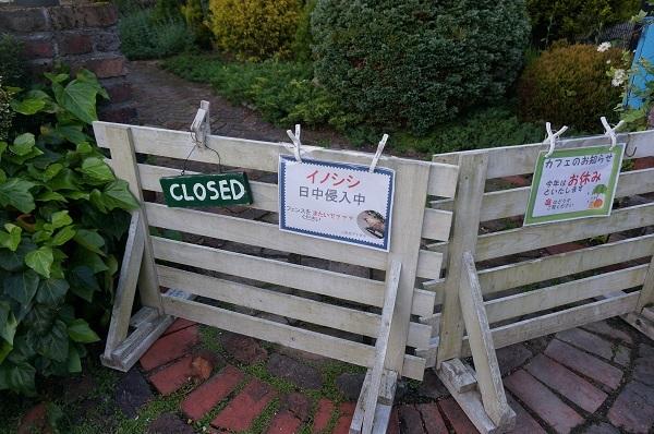 フェンス、柵_e0365880_21340862.jpg