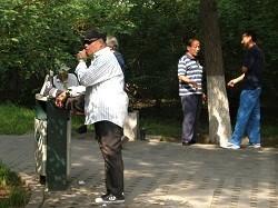 その後の形意拳&北京胡同の自由市場。。。_f0007580_23421453.jpg