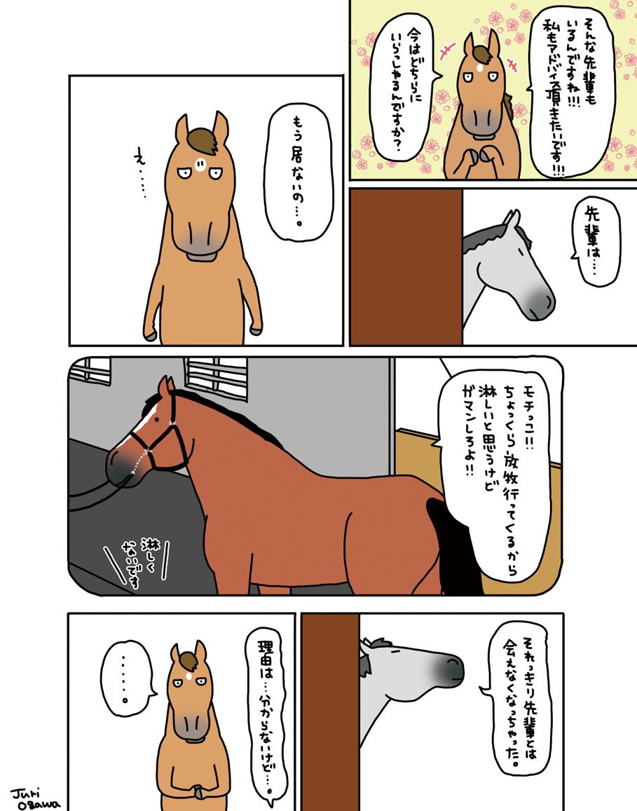 お母さんは競走馬・番外編・_a0093189_17073978.jpg
